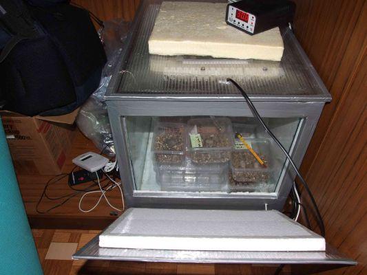 Inkubátor otevřený